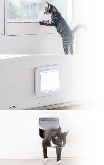 Cat-Flap-Fitting-Service